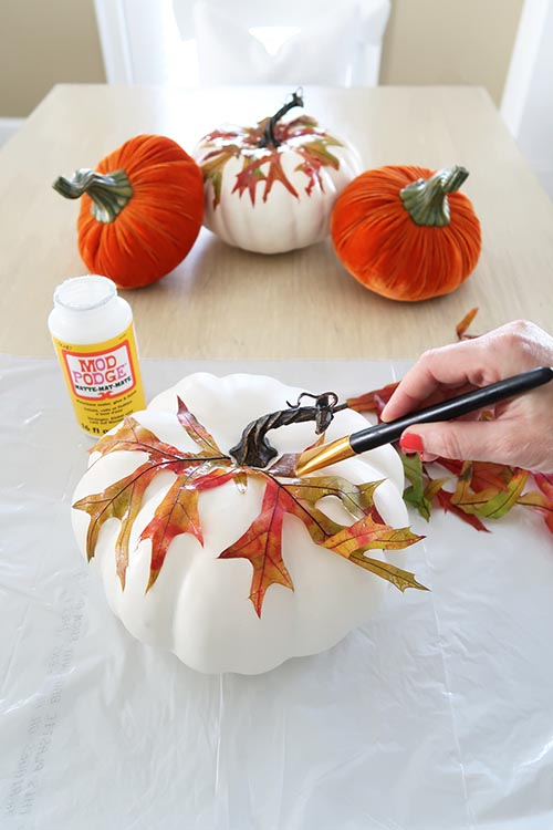 Keep adding leaves to the pumpkin and apply in the same way