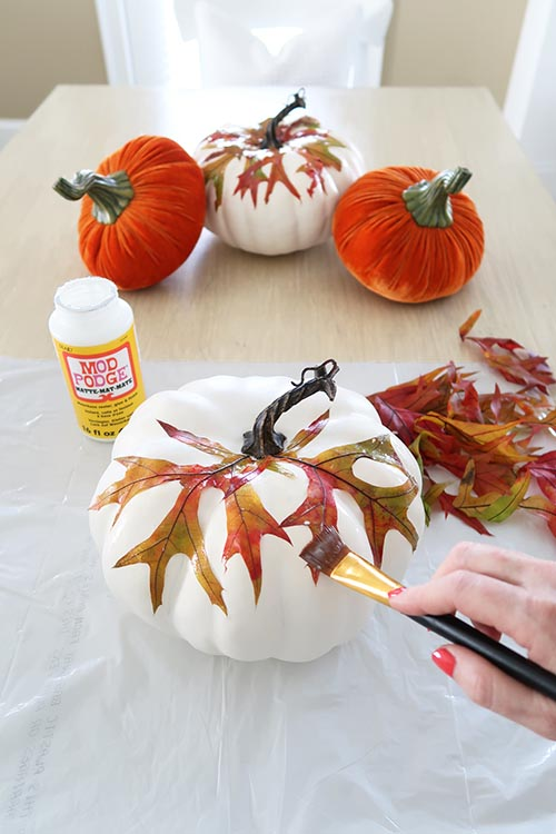 press down leaves with brush or mod podge tool