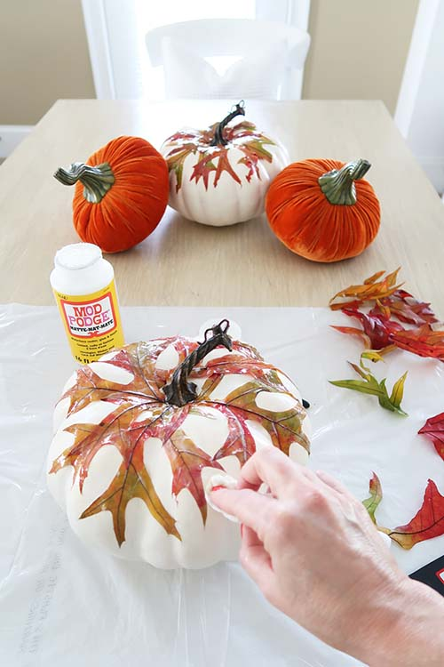 wipe off excess mod podge with paper towel or areas where the leaves bled color