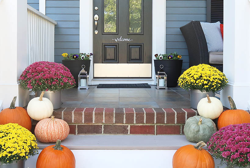 Mix of pumpkins and mums at front entry