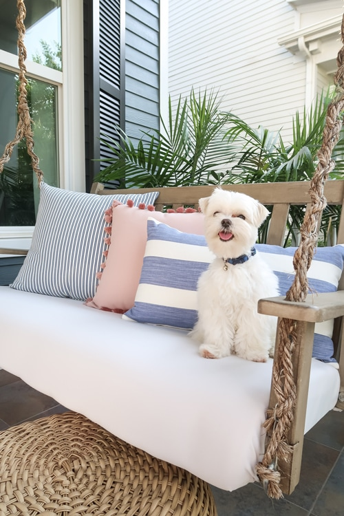 maltese-on-upholstered-porch-swing-blue-and-white-striped-pillows